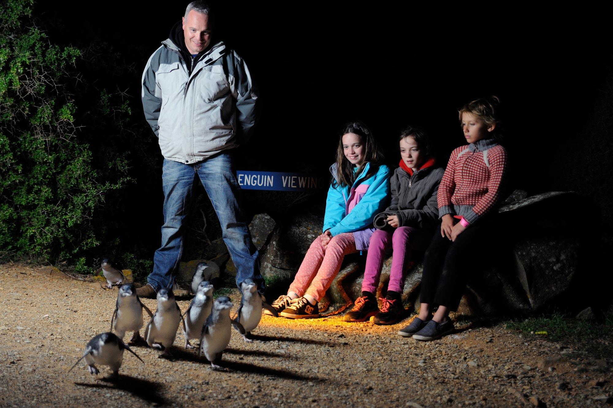 Five family-friendly ways to explore Tasmania