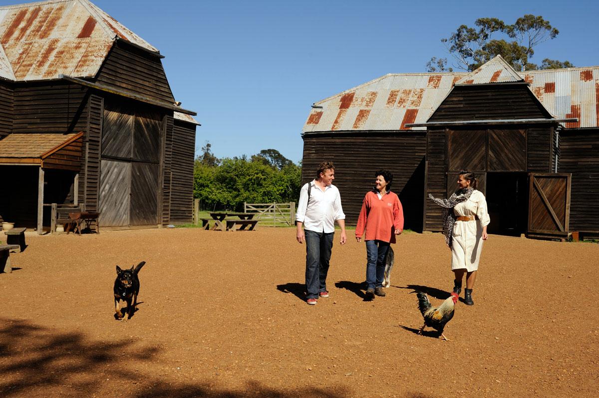 Exploring Brickendon Estate